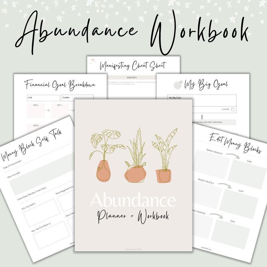 abundance workbook